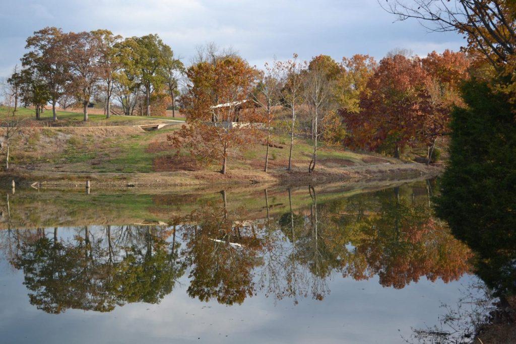 A calm river during the fall season