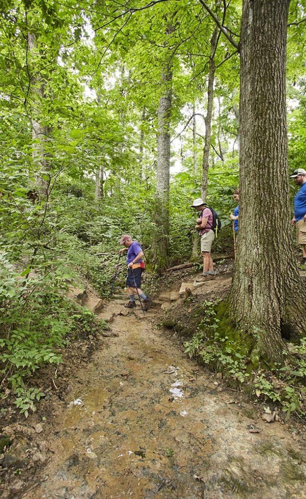 Leatherwood Trail