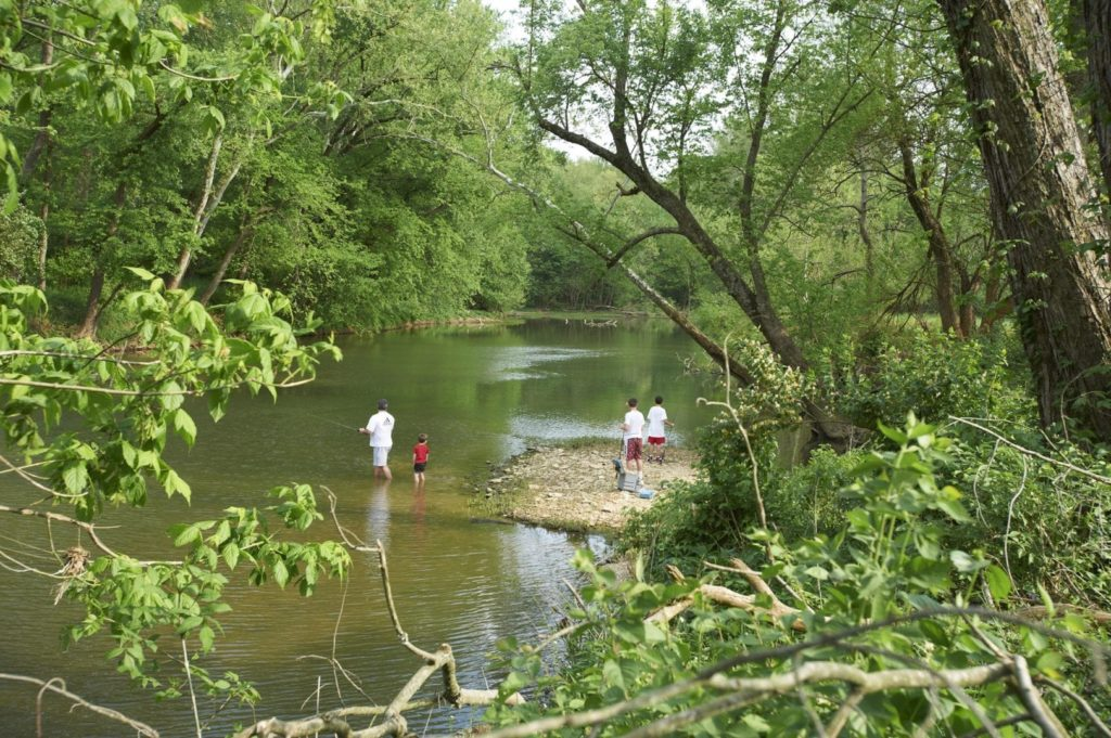 A family fishes and swims in a river