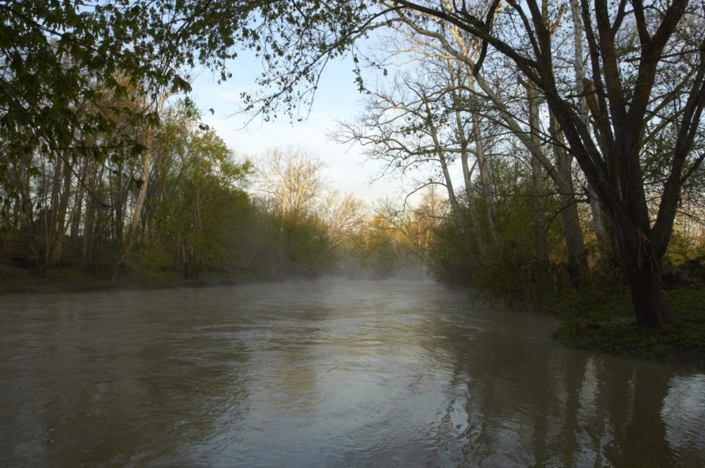 Fog hovers over a river