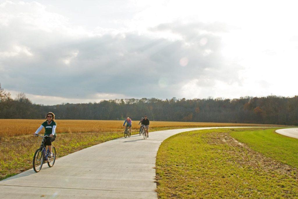 Bicyclists enjoy a sunny day