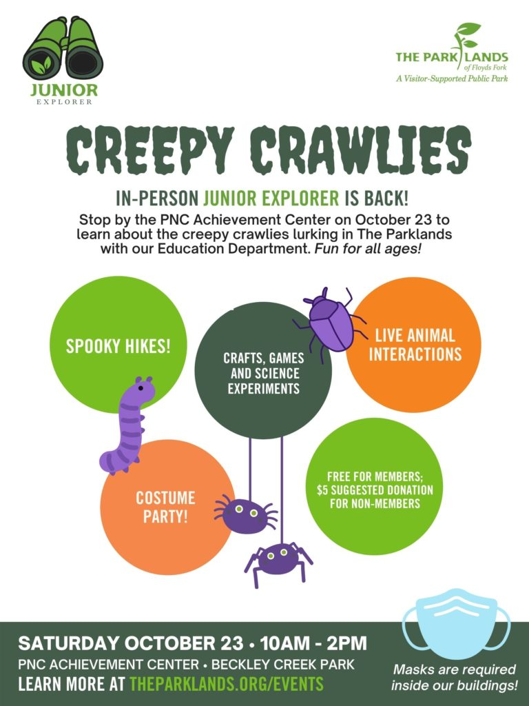 Creepy Crawlies Flyer